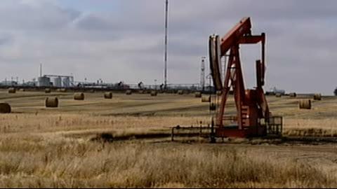 The curse of  oil  بترول (نفط) النعلة Mimouni_petrole-22b468f