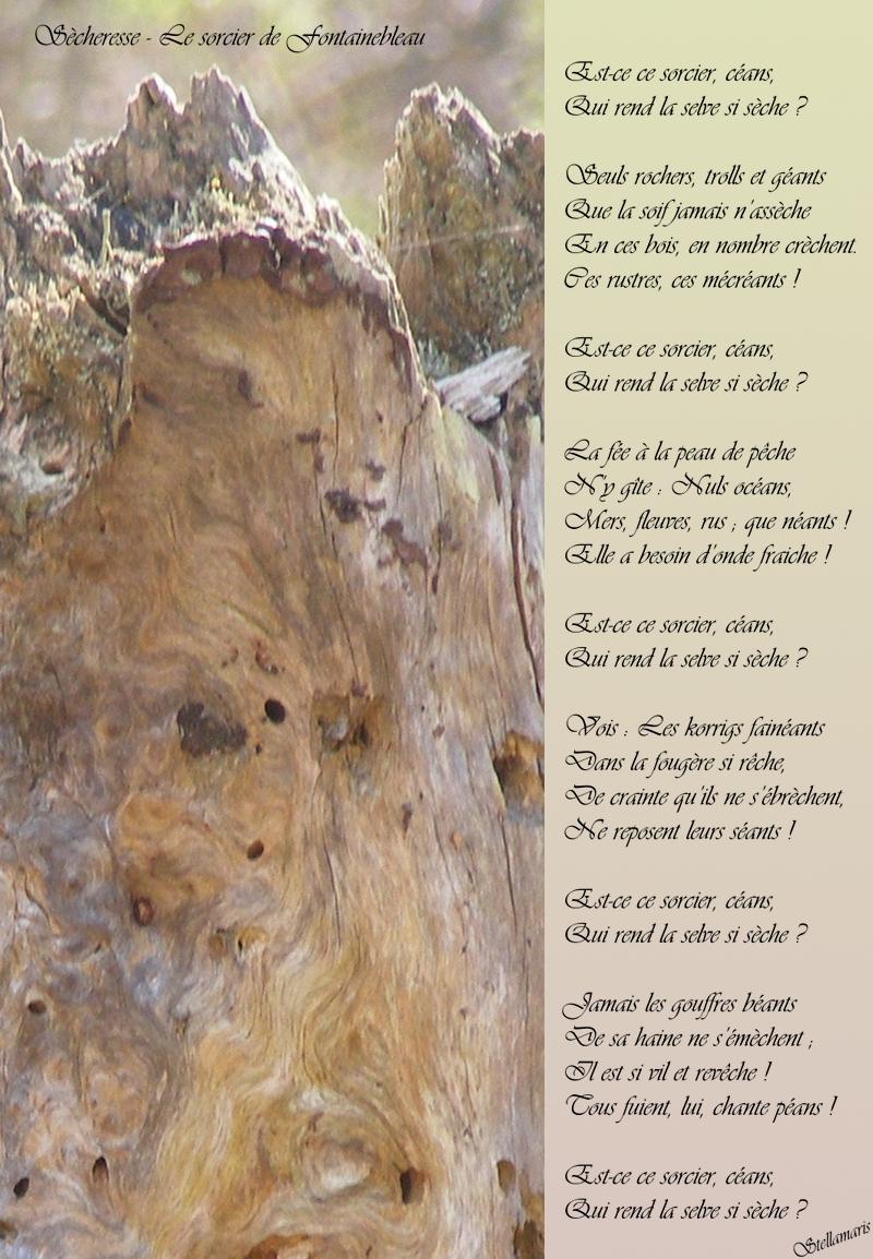 Sècheresse – Le sorcier de Fontainebleau / / Est-ce ce sorcier, céans, / Qui rend la selve si sèche ? / / Seuls rochers, trolls et géants / Que la soif jamais n'assèche / En ces bois, en nombre crèchent. / Ces rustres, ces mécréants ! / / Est-ce ce sorcier, céans, / Qui rend la selve si sèche ? / / La fée à la peau de pêche / N'y gîte : Nuls océans, / Mers, fleuves, rus ; que néants ! / Elle a besoin d'onde fraiche ! / / Est-ce ce sorcier, céans, / Qui rend la selve si sèche ? / / Vois : Les korrigs fainéants / Dans la fougère si rêche, / De crainte qu'ils ne s'ébrèchent, / Ne reposent leurs séants ! / / Est-ce ce sorcier, céans, / Qui rend la selve si sèche ? / / Jamais les gouffres béants / De sa haine ne s'émèchent ; / Il est si vil et revêche ! / Tous fuient, lui, chante péans ! / / Est-ce ce sorcier, céans, / Qui rend la selve si sèche ? / / Stellamaris